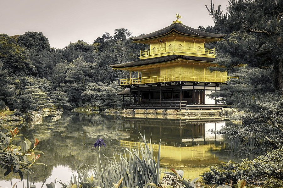 Kinkakuji | NIKON 12-24MM F/4G ED-IF AF-S DX <br> Click image for more details, Click <b>X</b> on top right of image to close